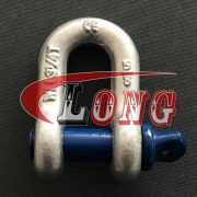 Galvanized  D Shackle China
