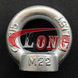 Lifting Eye Nut Din 582-China LG Manufacture